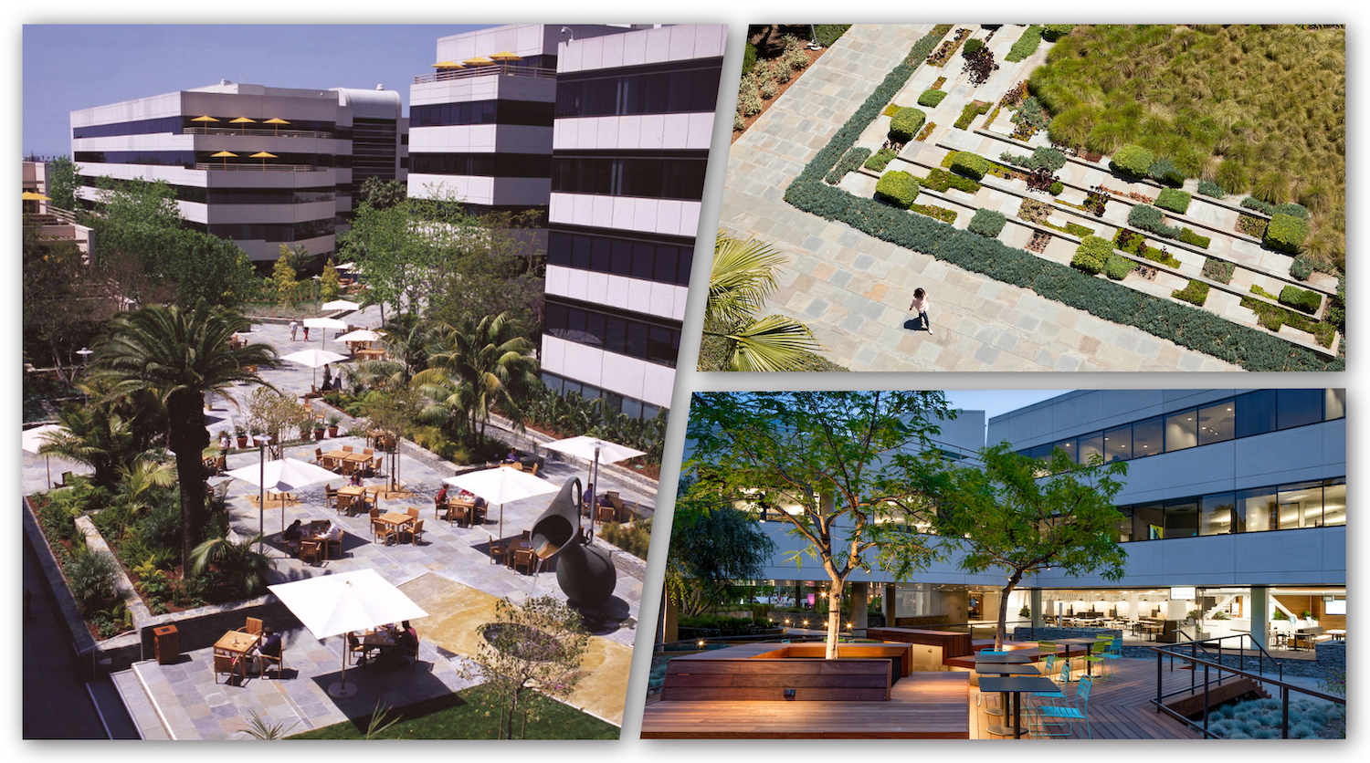 LA campus collage